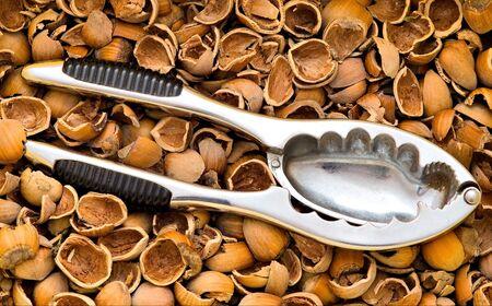 nutshell: nutcracker on a nutshell