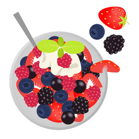 fruit salad: Fruit salad with cream and mint. Flat lay style. Vector illustration. Illustration