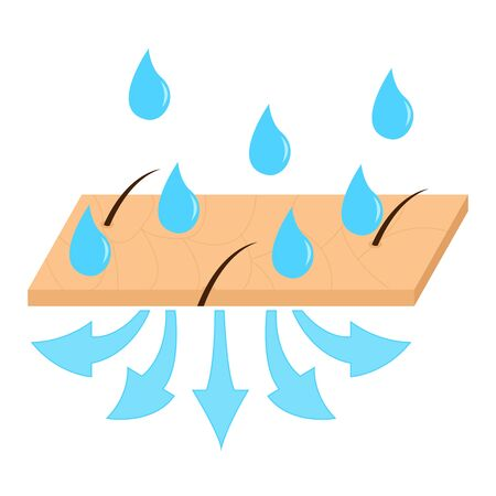 Skin hydration sectional view vector illustration.