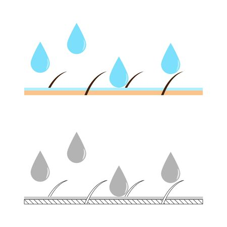dewy: Skin hydration sectional view vector illustration. Illustration