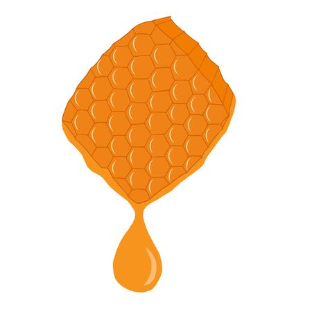honey comb: Hand drawn honey comb with a drop of honey isolated on white background. Vector illustration.