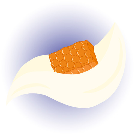 honey comb: Hand drawn honey comb with milk. Vector illustration.