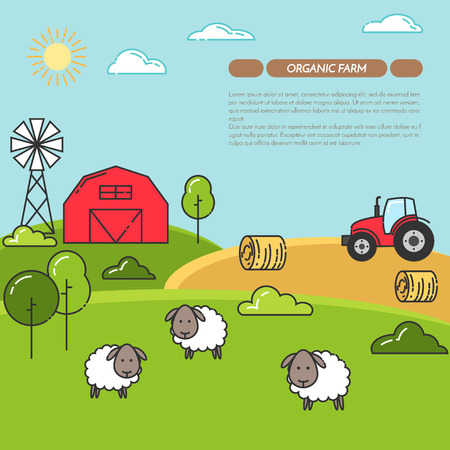 Farmhouse horizontal banner. Farm landscape with barn, tractor, sheeps. Concept for farmer business, farming, organic, eco, fresh, bio, agricultural products advertise Flat linear vector illustration Illustration