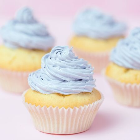 Cupcake decorated with violet buttercream on pastel pink background. Sweet beautiful cake. Square banner, greeting card for birthday, wedding, women's day. Close up photography. Selective focus.