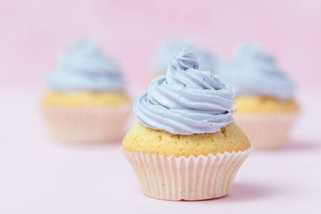 Cupcake decorated with violet buttercream on pastel pink background. Sweet beautiful cake. Horizontal banner, greeting card for birthday, wedding, women's day. Close up photography. Selective focus. Standard-Bild