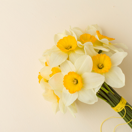 White daffodil bouquet on yellow pastel background with copy space. Closeup photography of spring flowers narcissus - tender floral comosition for greeting card or congratulation banner.