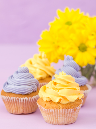Cupcakes decorated with yellow and violet cream and chrysanthemums on violet pastel background. Copyspace area. Can be used for greeting, mothers days and valentines card. Minimalism concept.