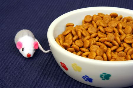 catfood: Una ciotola di cibo per gatti secco giocattolo con il mouse  Archivio Fotografico