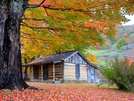 log cabin: Beautiful Cabin in Fall during peak season