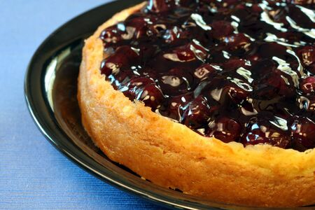 berry: Blueberry Cheesecake