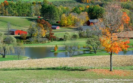 Autumn colors in a country farm  scene with barns, and a lake. Stock Photo