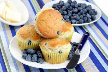 A plate of fresh baked blueberry muffins with fresh blueberries. Stock Photo - 4212829