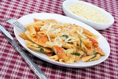 penne: Penne Ala Vodka with chicken and freshly grated parmigiana cheese on a white plate.