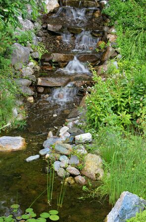 A small waterfall flowing into a stream surrounded by bushes and flowers.  Vertical composition. Stock Photo - 5422300