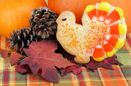 shaped: One turkey shaped decorated cookie in front of pumpkins, pine cones and fall leaves.  Festive autumn image. Stock Photo