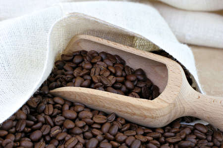 An open sack of coffee beans with a wooden scoop. photo
