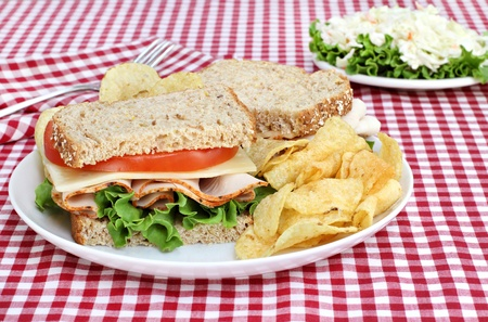 multi grain sandwich: Healthy turkey, swiss, lettuce and tomato sandwich on wholesome multi grain bread.  Set, picnic style, on a red checked tablecloth. Stock Photo