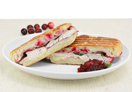 Close up of a delicious turkey, spinach, onion, melted cheese and homemade cranberry sauce.  Copy space.