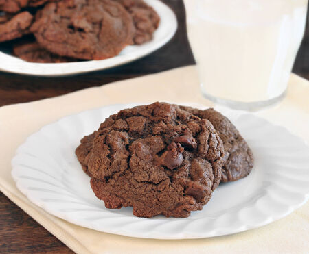 chocolate chip cookie: Two chocolate, chocolate chip cookies on a plate with a serving of milk