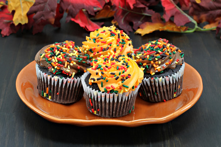 Chocolate cupcakes iced in chocolate and orange and decorated with fall sprinkles. 免版税图像
