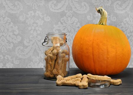 Homemade pumpkin dog biscuits in a bone shape in a canning jar, and on counter, next to a pumpkin.