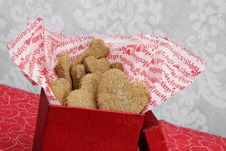 A slanted red box of homemade dog cookies, bone and heart shaped, for Valentines Day. Stok Fotoğraf