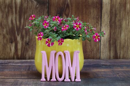 Mini petunias or calibrachoa in a yellow pot with the word Mom in front.  Gift idea for mom on Mother's Day or her birthday.