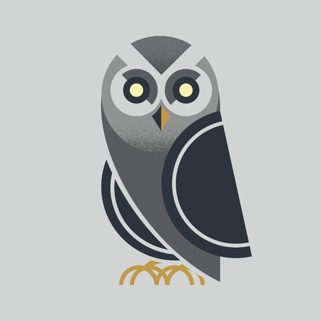 pigeon owl: owl vector Illustration