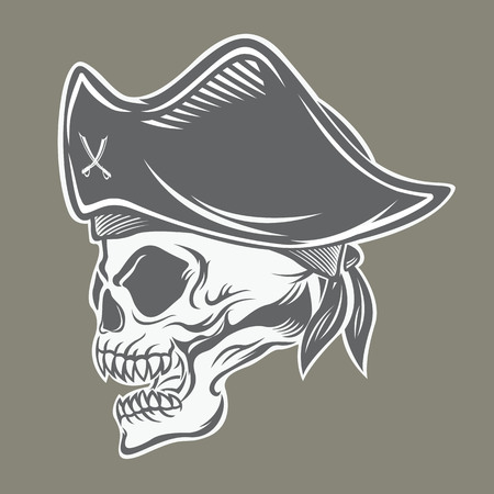 Pirate Banque d'images - 49040367
