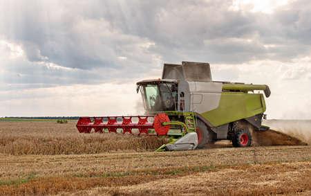 Combine harvester in action on wheat field. Redakční