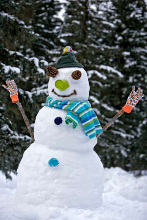 figur: Smiling Snowman in field with trees in background