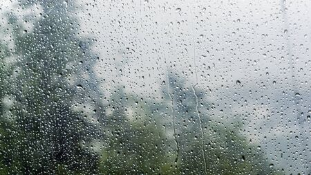 Rain drops on window with green tree in background. Stock Photo