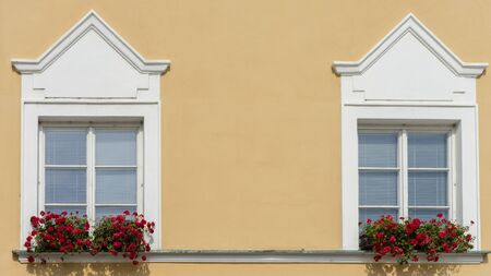 Beautiful windows with flower box and shutters