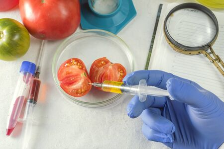 Close up of male scientist hands making test in laboratory at GMO. Nearby lies a note pad