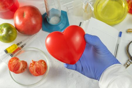Scientist's hand squeezes the heart on the background of test tubes and research tomato. Tomato is the best daily healthy diet and contains enough antioxidants, nutrients Stock Photo