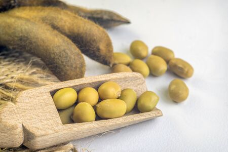 closeup is some soybeans with wooden spoon with White background.