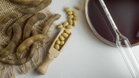 Soybeans in a wooden spoon, pods and soy sauce in a bowl on a white surface. Measuring instrument in a bowl. Top View Stock Photo