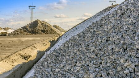 Sugar beet pile of the field after the harvest before processing at the plant for the production of sugar. Stock Photo