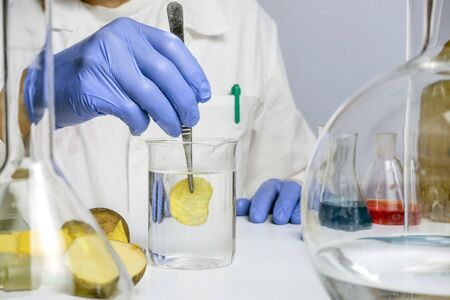 Food safety laboratory procedure, analysing potato chips from the market. Workplace lab assistant
