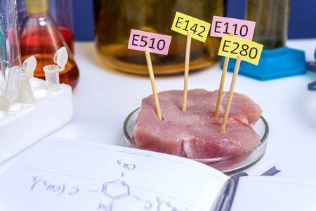 Notepad with chemical formulas nutritional supplements. Laboratory, meat research. Plates with E Stock Photo