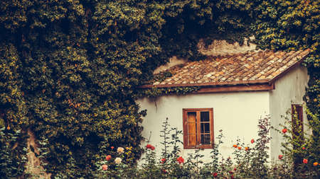 Lovely and beautiful fairy-tale house with roses against a background of greenery and stone.