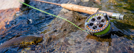 A fly fishing rod and reel on the river bank. Trout fishing.