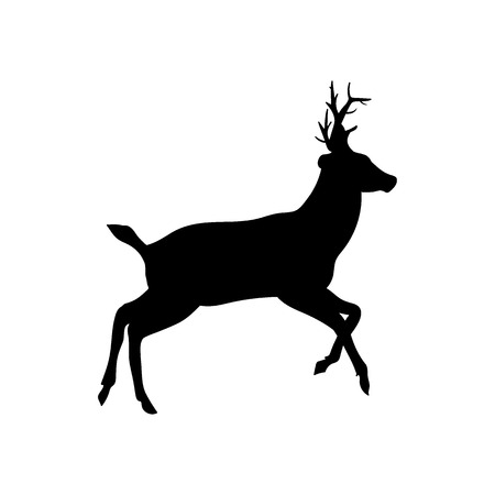 ruminant: Beautiful noble proud sika deer are ruminant mammal in family Cervidae. Side view. Dark ink hand drawn picture sketchy in art retro style pen on paper with space for text