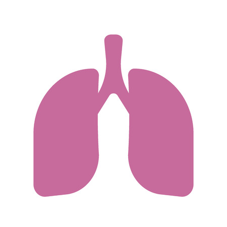 flue: Lungs vector icon