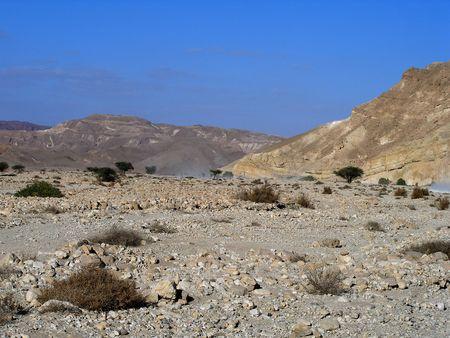 judean: Judean desert      Stock Photo