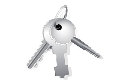 sheaf: Haz de diferentes claves sobre un anillo especial con una sombra sobre un fondo blanco