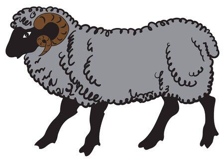 Illustration of a big ram on white background Illustration