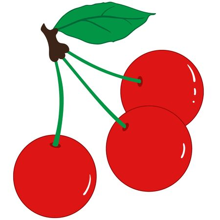 Illustration of three ripe red cherries on a white background