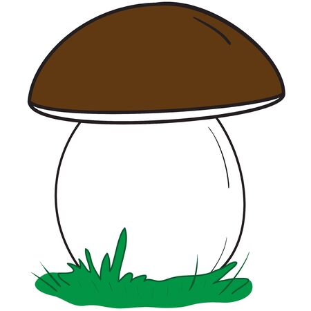 Illustration of large white mushroom on a white background Illustration