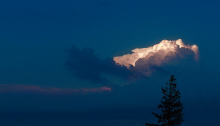 Beautiful clouds and a silhouette of a tree in the twilight